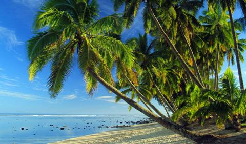 A Guide to Offshore Trust Company in the Cook Islands
