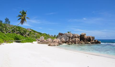 Benefits of Seychelles Company Formation with Bank Account