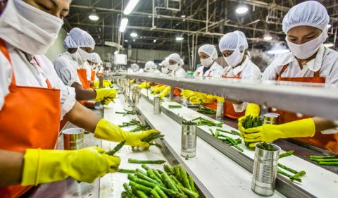 Food Processing Business: Facility Housekeeping Essentials