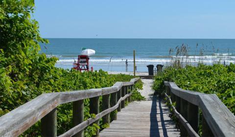 Planning to Start an Offshore Business in Florida? Seek Expert's Guidance!