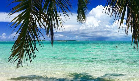 How to Start an Offshore Company in the Bahamas?