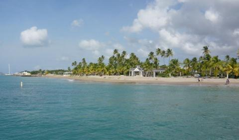 How to Start an Offshore Company in Nevis?