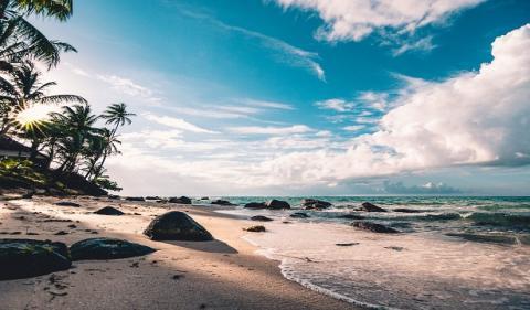 Mauritius Offshore IBC Guide