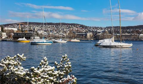 Why is Switzerland Offshore a Tax Haven?