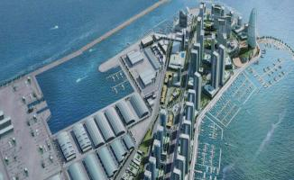 Dubai Maritime City (DMCA) Free Zone